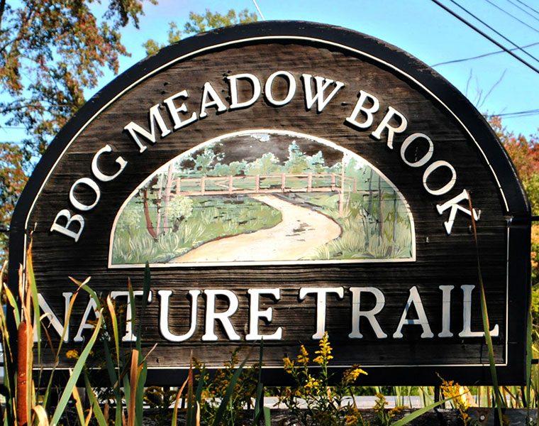 Bog Meadow Brook Trail
