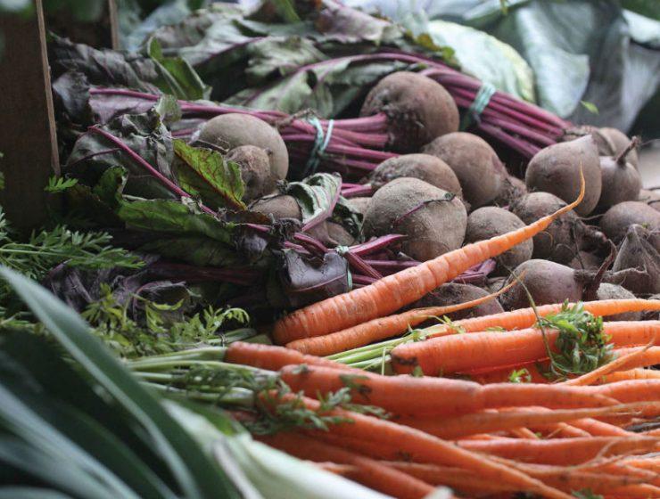 Produce from Stannard Farm in Salem at Saratoga Farmers' Market.