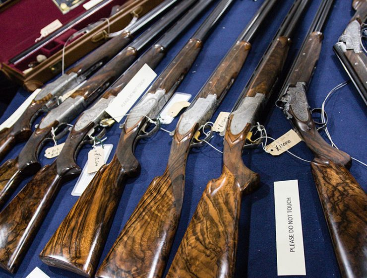 Saratoga Gun Buyback Program