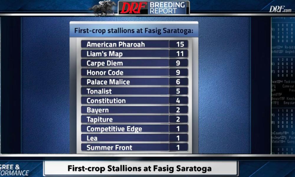 Daily Racing Form First Crop Stallions At Fasig Tipton Saratoga