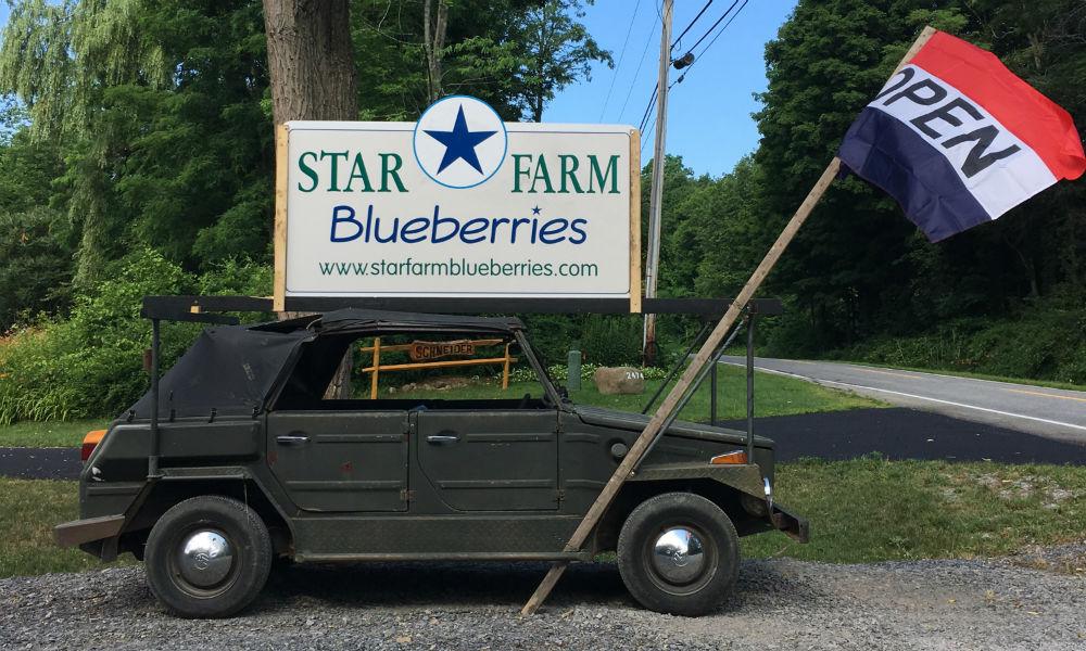 Star Farm Blueberries