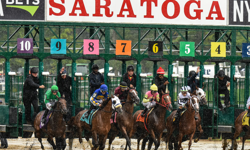 Daily Racing Form Nearly Every Belmont Saratoga Card To