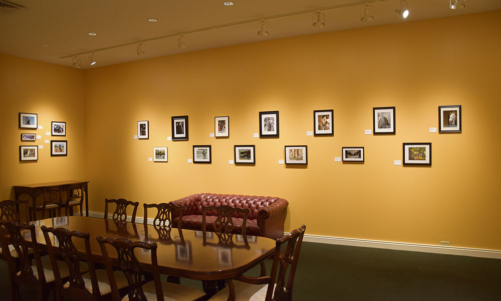 Photography Exhibit at the National Museum of Racing and Hall of Fame