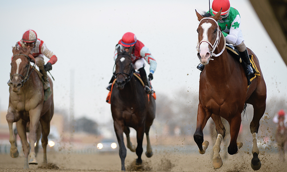 Kentucky Derby 2019: We Know The Winner! - Saratoga Living