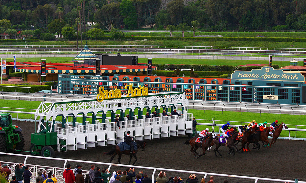 Santa Anita Suspension