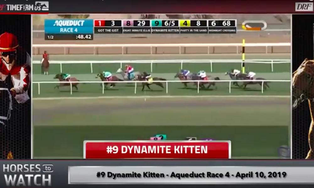 Daily Racing Form Video: Horses To Watch - April 17, 2019 - Saratoga